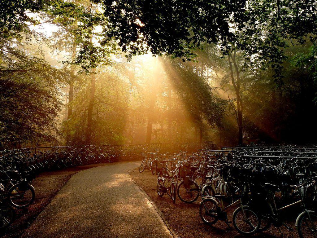 Genieten van de natuur op een witte fiets